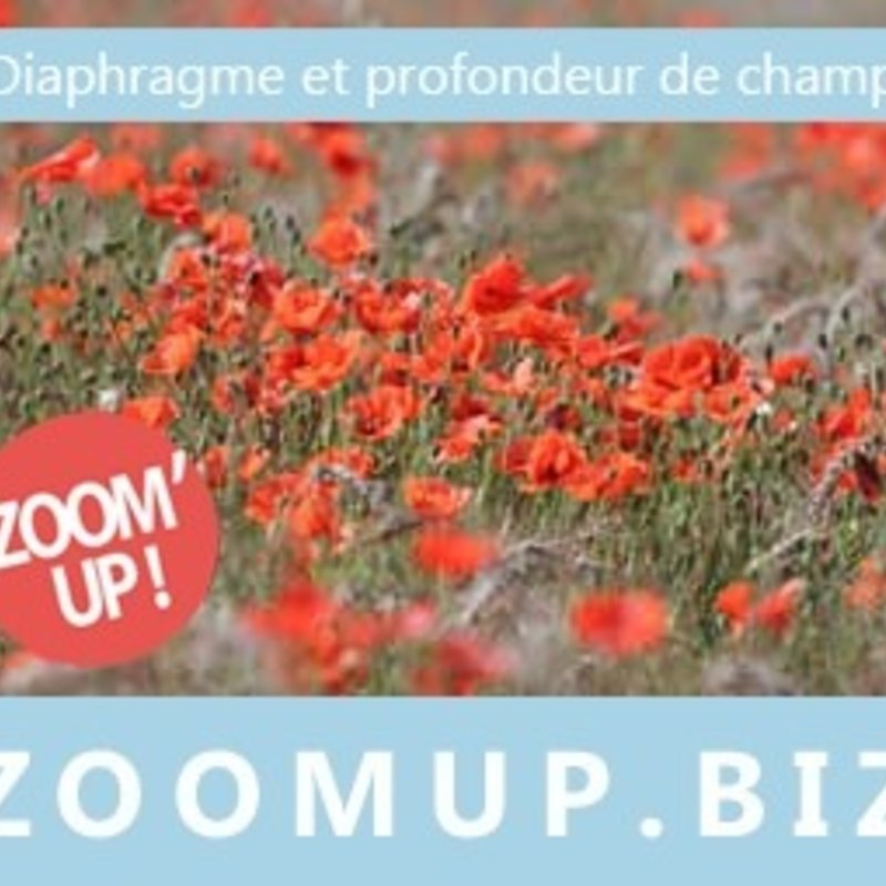 Cours de photo avec Zoom'Up photo 8 / 16